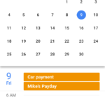 Month View Google Calendar App on an Iphone